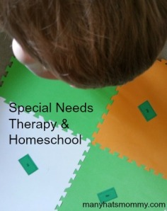 Click here for an update on our Family Hope Center program & homeschool! via manyhatsmommy.com